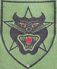 Tiểu Đoàn 37 Biệt Động Quân 70 Ngày Tử Chiến Ở Khe Sanh – Vương Hồng Anh –  dòng sông cũ